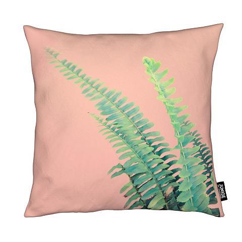JUNIQE Dekoratyvinė pagalvėlė »Ferns on Blush...