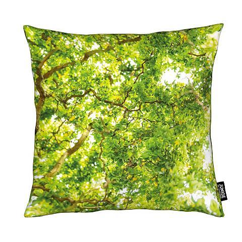 Dekoratyvinė pagalvėlė »Hazel Tree« Ju...