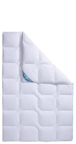 f.a.n. Schlafkomfort Microfaserbettdecke »Kansas« Füllung: ...