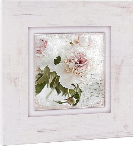 HOME AFFAIRE Paveikslas »Rosa Blume«