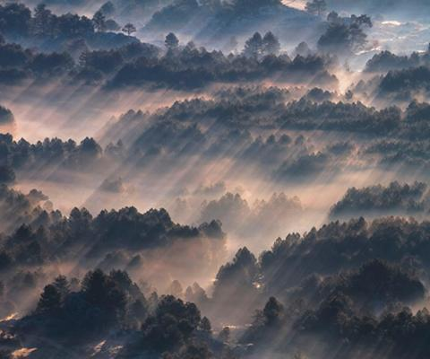 KOMAR Vlies fototapetas »Rays« 300/250 cm