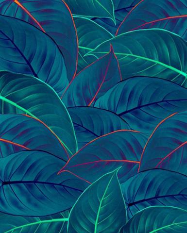 KOMAR Vlies fototapetas »Foliage« 200/250 cm...
