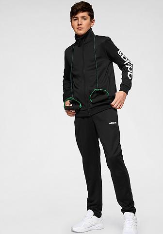 ADIDAS Sportinis kostiumas »YOUNG BOYS TRACKS...