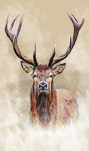 Reinders! Paveikslas »Hirsch«