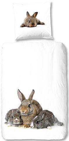 GOOD MORNING Patalynė »Cute Rabbits«