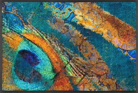 WASH+DRY BY KLEEN-TEX Durų kilimėlis »Exotic Pavo« wash+dry ...