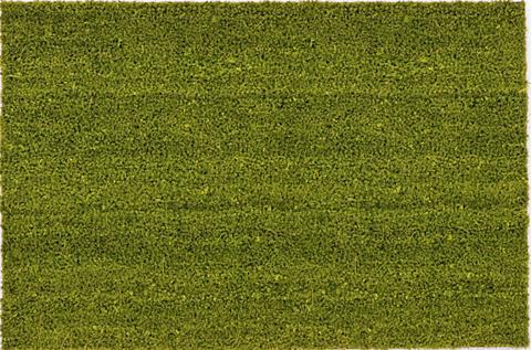 ASTRA Durų kilimėlis »Kokosvelours 106« rech...