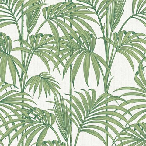 Tapetai »Honolulu Palm Green«
