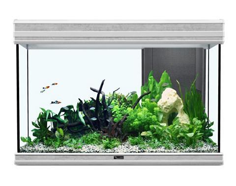 AQUATLANTIS Rinkinys: akvariumas »Fusion 80 LED 2....
