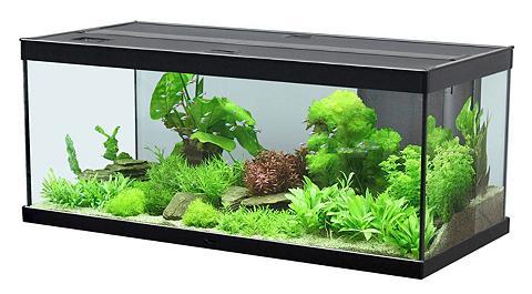 AQUATLANTIS Rinkinys: akvariumas »Style 100 LED 2....
