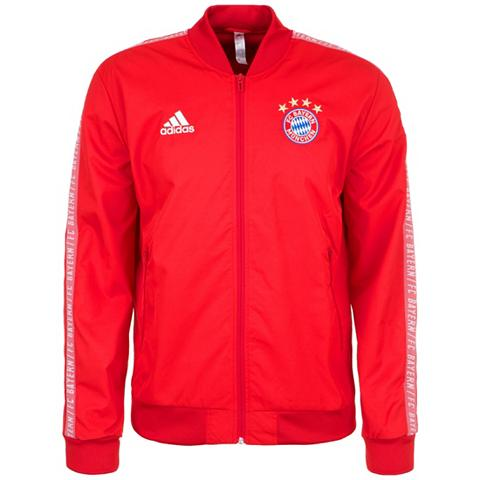 ADIDAS PERFORMANCE Bliuzonas »Fc Bayern München Anthem«