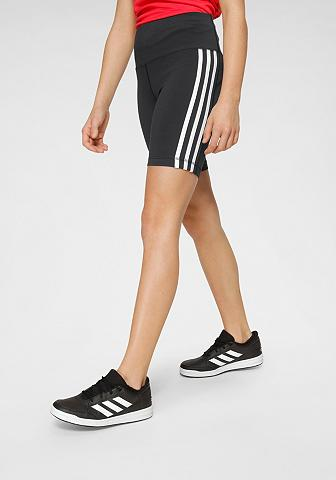 adidas Performance Trainingsshorts »BELIEVE THIS 3-STREIF...