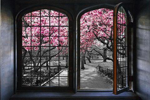 queence Wandsticker »Kirschblüten«