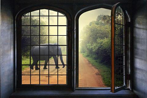 queence Wandsticker »Elefant«