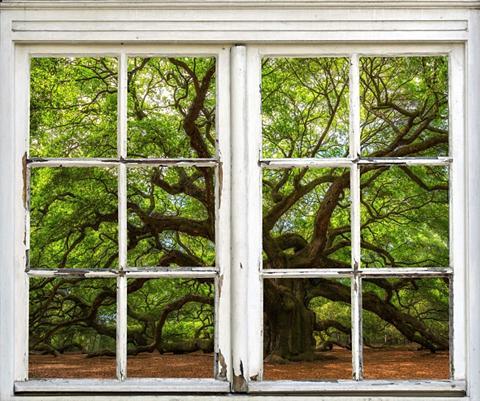 queence Wandsticker »Baum«