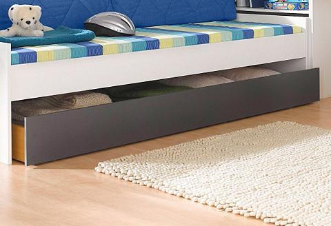 PACK`S lovos stalčius