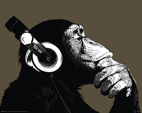 HOME AFFAIRE Paveikslas »The Chimp - stereo«